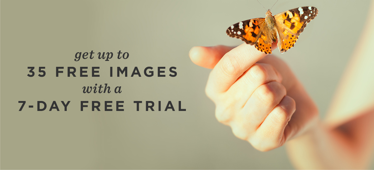 GIVE YOURSELF 35 FREE IMAGES